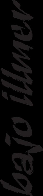 bajo-illmer-Logo1